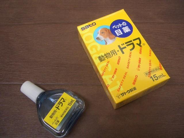 CIMG9090.JPG